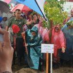 Hujan-hujanan, Iriana Jokowi Tanam Pohon Mangrove di Tanjung Lesung